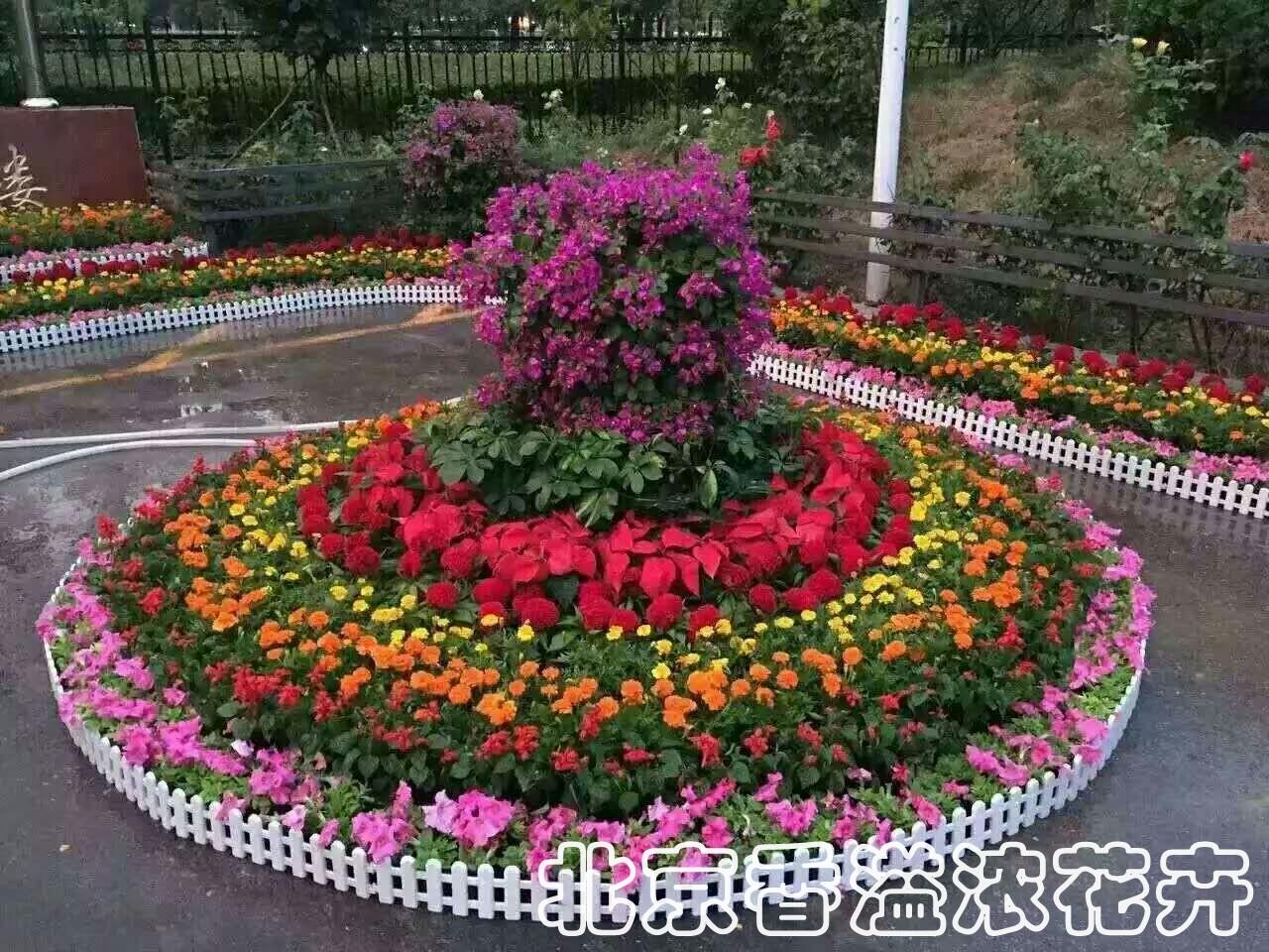 一个半圆形花坛,外围周长是51.4米,这个花坛的半径是多少米?